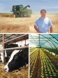 ProCredit Bank iti finanteaza investitiile in agricultura